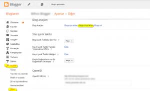 bloggerdan-wordpresse-tasinmak-1