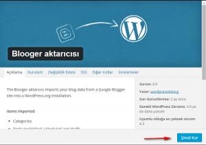 bloggerdan-wordpresse-tasinmak-4